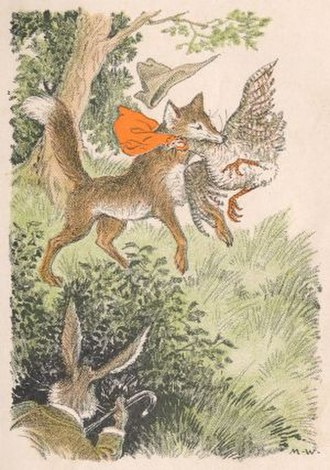 Milo Winter - Brushtail grabs a big Plymouth Rock hen by the neck, illustration for Doctor Rabbit and Brushtail the Fox by Thomas Clark Hinkle