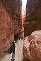 Bryce Canyon, Wall Street (3679382219).jpg
