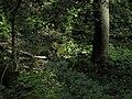 Bubovice-Srbsko - panoramio (44).jpg