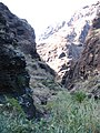 Buenavista del Norte, Santa Cruz de Tenerife, Spain - panoramio.jpg