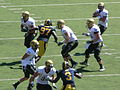 Buffaloes on offense at Colorado at Cal 2010-09-11 17.JPG