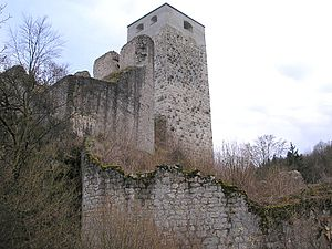 Wellheim Castle - The castle from the northeast