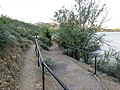 Butcher Jones Trail - Mt. Pinter Loop Trail, Saguaro Lake - panoramio (14).jpg
