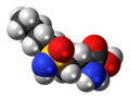 Buthionine-sulfoximine-3D-spacefill.png