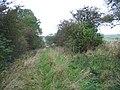 Byway to Hallington - geograph.org.uk - 1536419.jpg
