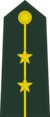 First Lieutenant