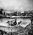 COLLECTIE TROPENMUSEUM Ploegende boeren met karbauen bij Kawangkoan in Minahasa Noord-Celebes TMnr 10002845.jpg