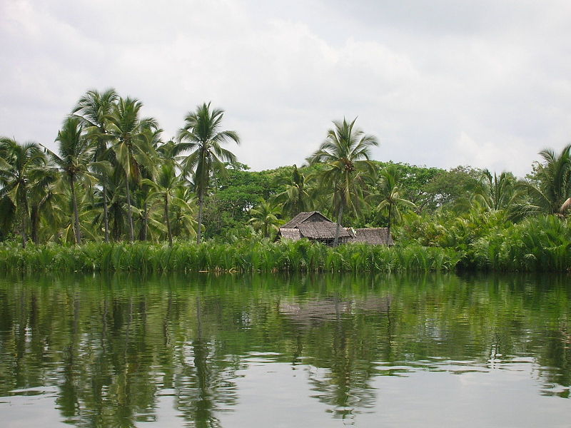 File:Cadacan River Samar Philippines with house.JPG