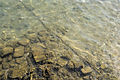 Caesarea maritima (DerHexer) 2011-08-02 050.jpg