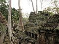 Cambodia 08 - 086 - Ta Prohm (3227695797).jpg