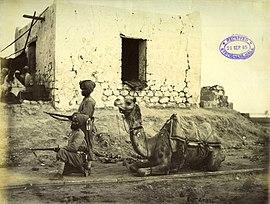 1884 год, сикхи верблюжьего корпуса во время Нильской экспедиции.