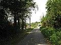 Camp Lane Approaching Camp Farm - geograph.org.uk - 1482796.jpg
