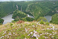 Canyon of the River Uvac 8602.NEF 11.jpg