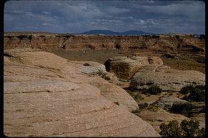 Canyonlands National Park CANY3320.jpg