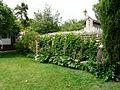 Carbonne jardin Abbal (2).jpg