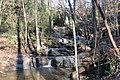 Cascade Falls, Cascade Springs Nature Preserve, Atlanta, December 2018 2.jpg