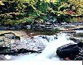 Cascade d'automne.jpg