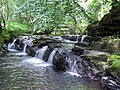 Cascades on the Lower Clydach River - geograph.org.uk - 846484.jpg