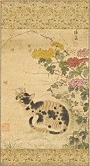 Cat under Chrysanthemums  Hen and Chicks under Flower