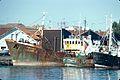 Chalutiers à chalutage latéral dans le port de La Rochelle (1).jpg