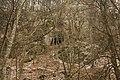 Cheile Vârghișului - Varghis Gorges - panoramio (25).jpg
