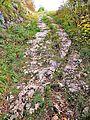 Chemin antique ornièré, appelé voie Romaine.jpg