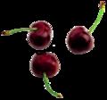 Cherries black.png