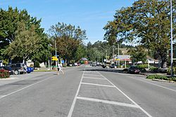 A straight street, divided by painted lines, passing through a town. The street is lined by parked vehicles, trees and buildings. Two men dressed in t-shirts and short are crossing the road from left to right in the middle distance.
