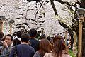 Chidorigafuchi (3451897702).jpg