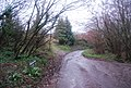 Chilcombe Lane - geograph.org.uk - 1657275.jpg