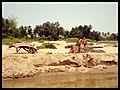 Children on the beach Mekong river - panoramio.jpg