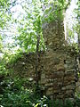 Chornokozyntsi castle ruins 11.JPG