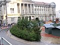 Christmas trees in Chamberlain Square (4118386880).jpg