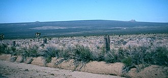 Cima Dome & Volcanic Field National Natural Landmark - Image: Cima Dome 82