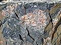 Clast-rich impact pseudotachylite (Sudbury Breccia, Paleoproterozoic, 1.85 Ga; Windy Lake Northwest roadcut, Sudbury Impact Structure, Ontario, Canada) 21 (33862360458).jpg