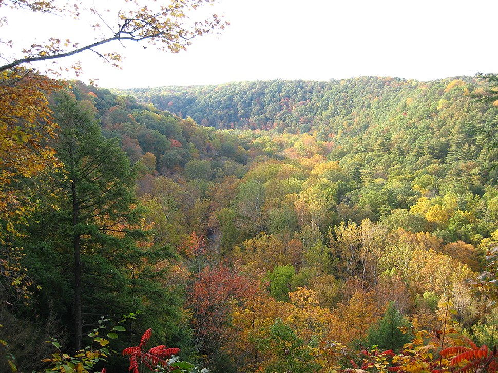 Clear Fork Gorge from Mohican State Park Gorge Overlook