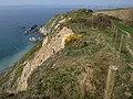 Cliffs above Platt - geograph.org.uk - 1239604.jpg