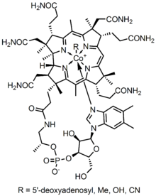 Structure of the vitamin B12 and related cofactors, which feature Co-C bonds.