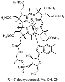 The Total Synthesis Of Vitamin B12 Marked A Major Achievement In Organic Chemistry