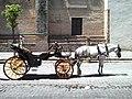 Coche de caballos (Sevilla).jpg