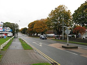 Colchester Avenue. - geograph.org.uk - 1552198.jpg