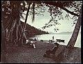 Collectie Nationaal Museum van Wereldculturen TM-60062337 Gezelschap aan de oever van een baai, tussen grote bomen Trinidad fotograaf niet bekend.jpg