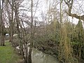Collingham Beck seen from Harewood Road, Collingham, West Yorkshire (20th February 2021).jpg