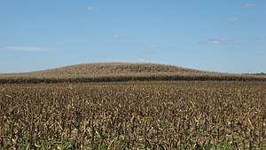 National Register of Historic Places listings in Ste. Genevieve County, Missouri - Image: Common Field Archaeological Site platform mound