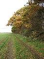 Common Road - geograph.org.uk - 1041369.jpg