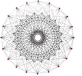 Complex 4-polytope almost regular 80 vertices.png