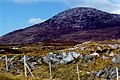 Connemara - Scene off N59 - House and mountain - geograph.org.uk - 1622521.jpg