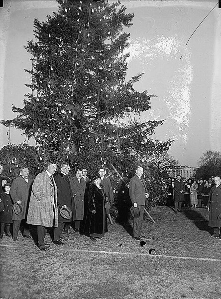 File:Coolidge & community Christmas tree25154v.jpg