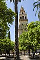 Cordoba Minaret.jpg