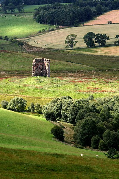 File:Corsbie Tower from Knock Hill - geograph.org.uk - 1425592.jpg